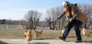 Nancy Camden, arm extended, chases chickens with a microphone in order to record a segment.